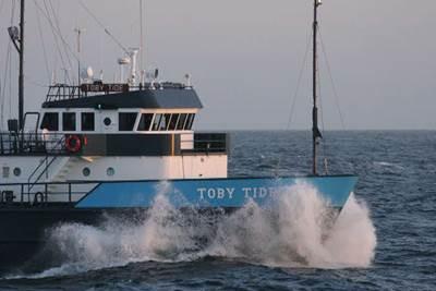 Toby Tide