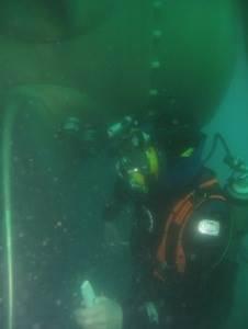 Photo credit FN Diving