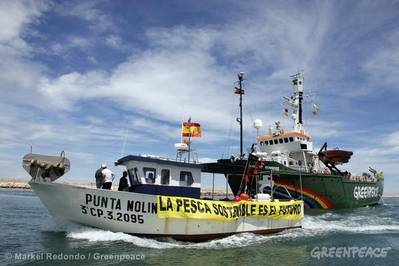 Fishing Law Reform:Image courtesy of Greenpeace