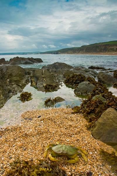 Photo: Coastline Surveys