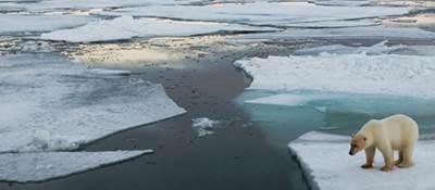 Arctic scene: Photo in public domain