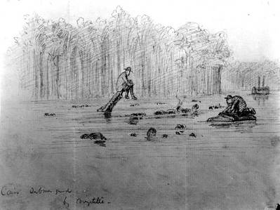 """Sketch of the ship's wreck, entitled """"Cairo Submerged"""", probably depicting the scene immediately after she was sunk by a Confederate mine in the Yazoo River, Mississippi, on 12 December 1862. Note men sitting on projecting timbers and swimming in the water nearby. Courtesy of Mrs. A. Hopkins, 1927. U.S. Naval Historical Center Photograph."""