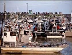 Fishing Boats, Bristol Bay: Photo courtesy of 'Fishermen for Bristol Bay'