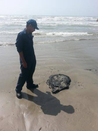 Petty Officer 2nd Class Clarence Rivera visually measures a tar ball during the clean up of a 20-mile stretch of land from Padre Island National Seashore to the beaches of Port Aransas, Aug. 6, 2013. Beachgoers contacted Coast Guard Station Port Aransas Sunday to report that tar patties were washing ashore. Sector Corpus Christi deployed personnel from their Incident Management Division to respond. (U.S. Coast Guard photo)