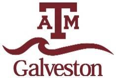 Texas A&M University at Galveston